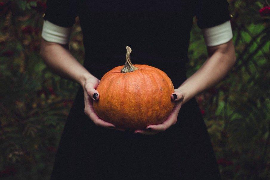 pumpkin-1838545_1280
